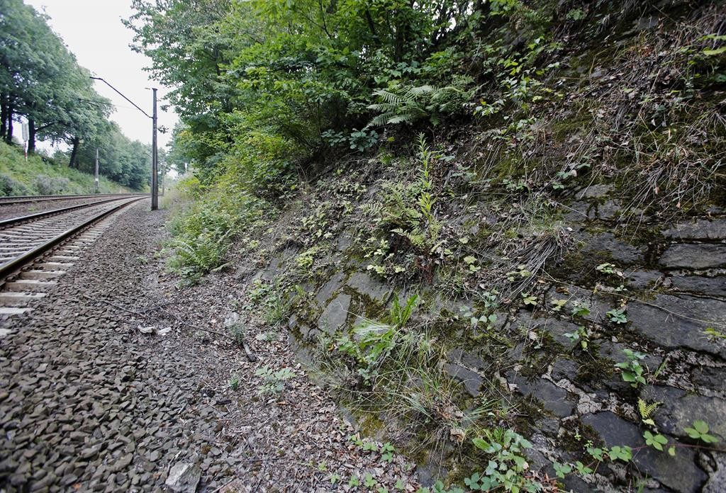 The potencial site where a Nazi gold train is believed to be hidden, near the city of Walbrzych, Poland, Friday.  (AP Photo/Str)