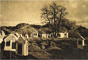 "The ""old"" Vilna cemetery before its destruction."