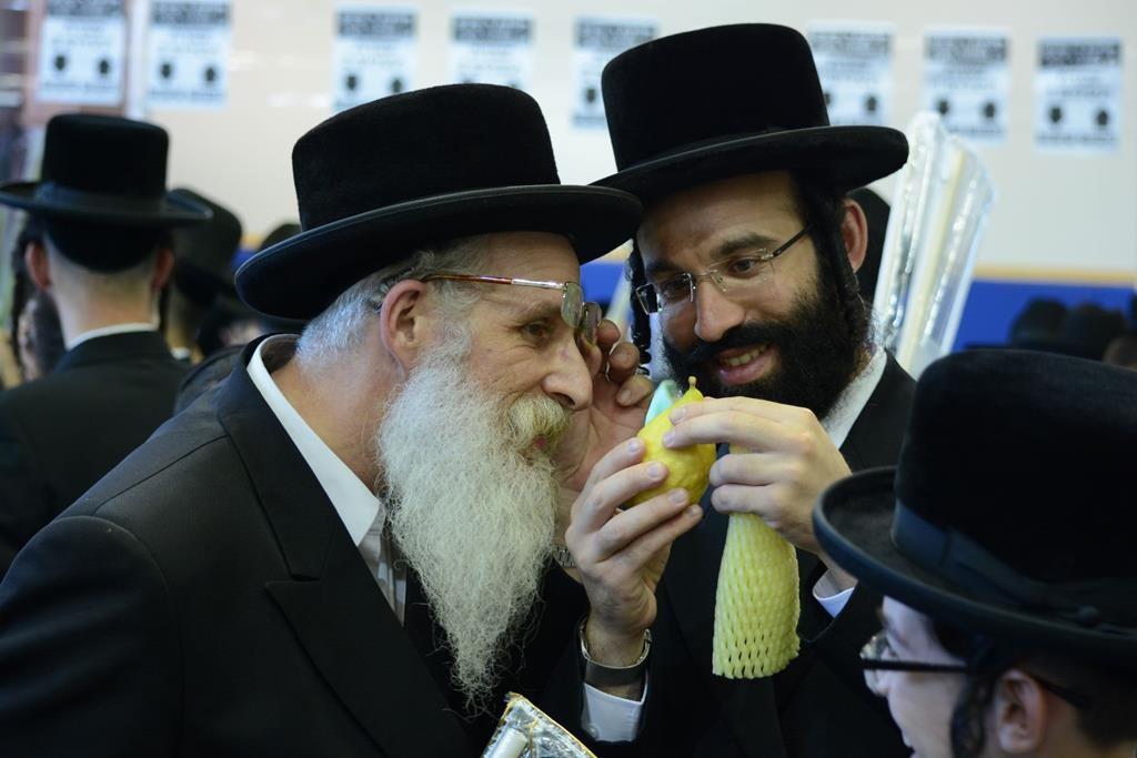 Shoppers examine pri etz hadar at a marketplace in Bnei Brak. (JDN)