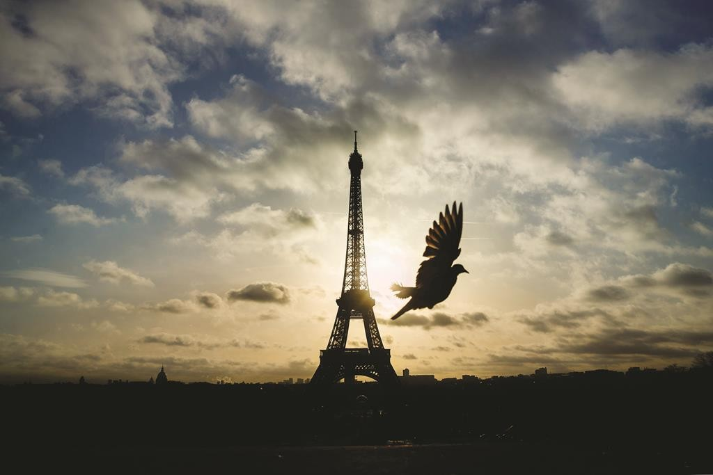 A bird flies in front of the Eiffel Tower, which remained closed on the first of three days of national mourning, in Paris on Sunday. (AP Photo/Daniel Ochoa de Olza)