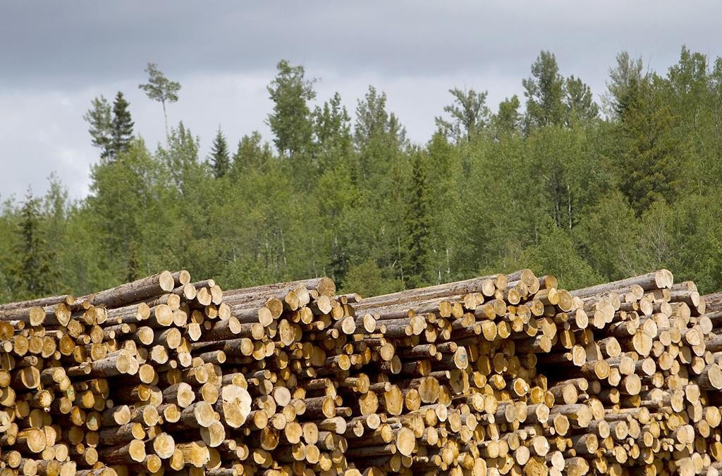 Logs at the Dunkley Lumber Ltd. sawmill in Prince George, British Columbia, Canada, in 2013. (Ben Nelms/Bloomberg News)