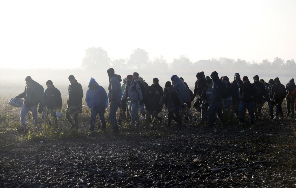 Migrants walk in the field near a borderline between Serbia and Croatia, near the village of Berkasovo, Serbia, Wednesday, Oct. 21, 2015. Croatia, which has erected relatively few shelters along its borders with Serbia and Slovenia, directed thousands into special trains and bus convoys Tuesday to Slovenia in an apparently concerted effort to clear a backlog built up since Saturday, when Hungary closed its borders with Croatia. (AP Photo/Darko Vojinovic)
