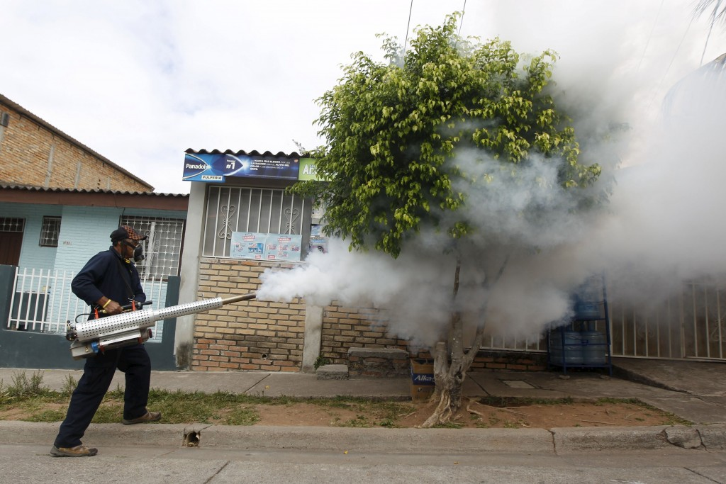 A municipal health worker carries out fumigation on a street as part of the city's efforts to prevent the spread of the Zika virus vector, the Aedes aegypti mosquito, in Tegucigalpa, Honduras, January 30, 2016. REUTERS/Jorge Cabrera