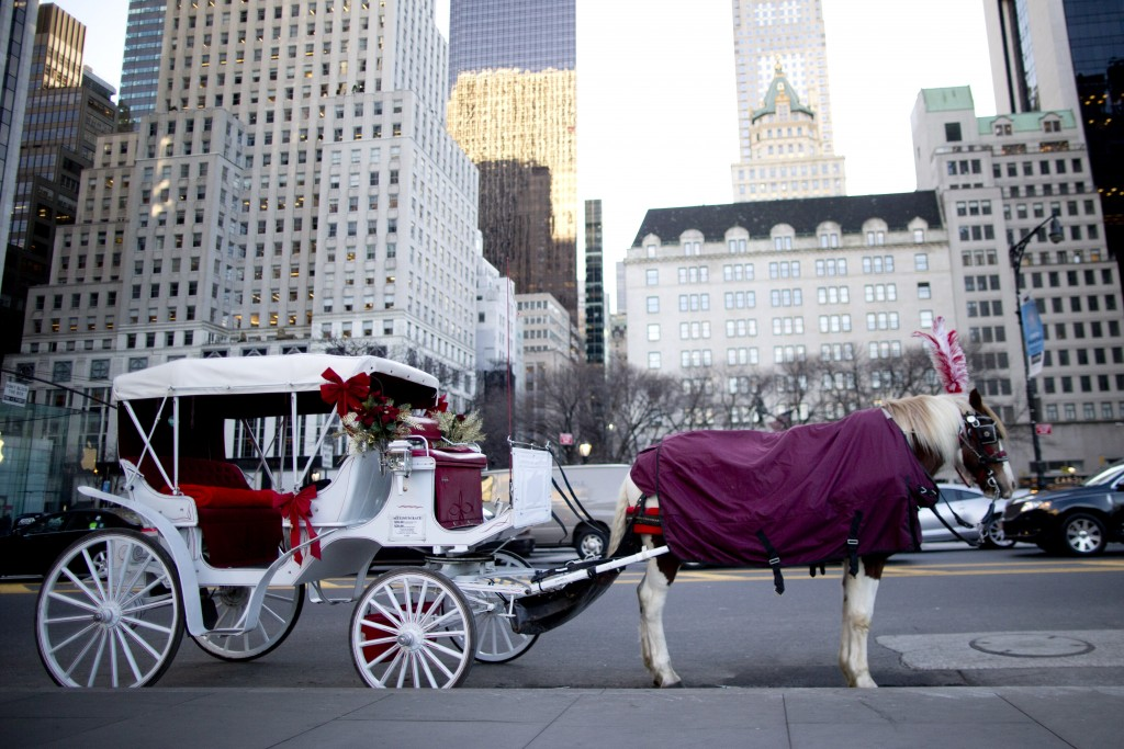 A carriage horse is covered in a blanket last Wednesday as it waits for customers on Central Park. (AP Photo/Mary Altaffer)