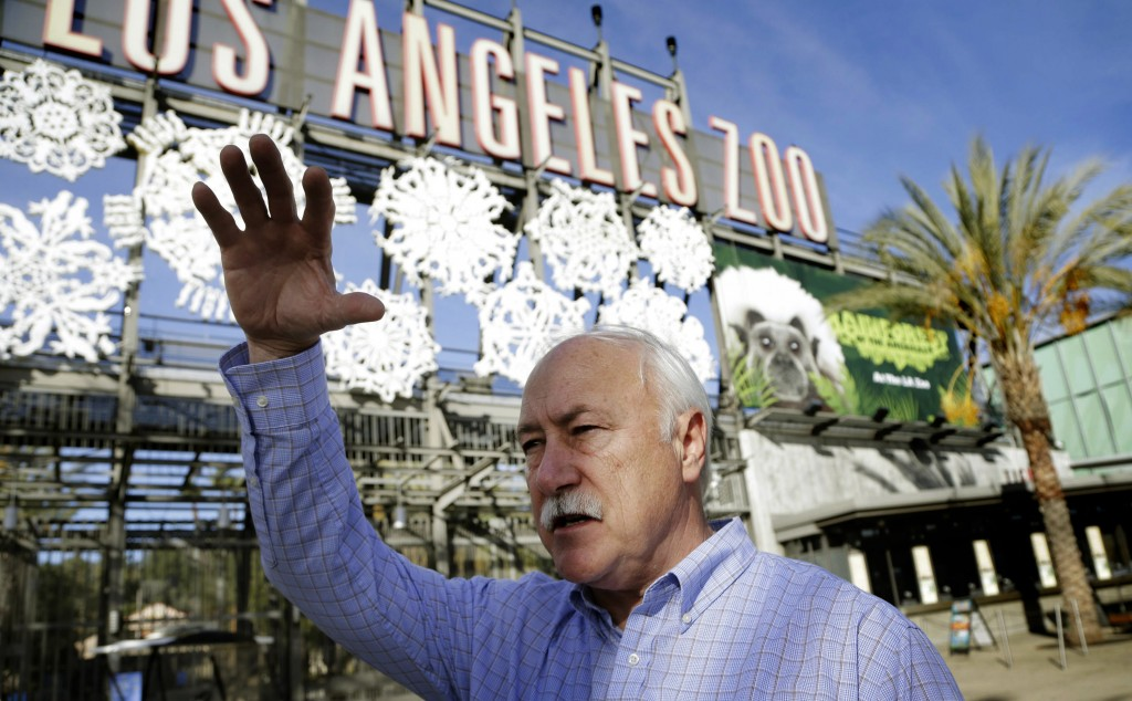 John Lewis, Director of the Los Angeles Zoo, talks to the media in Los Angeles on Thursday, after a worker at the zoo was hospitalized with a possible broken leg after falling into the gorilla enclosure. (AP Photo/Nick Ut)