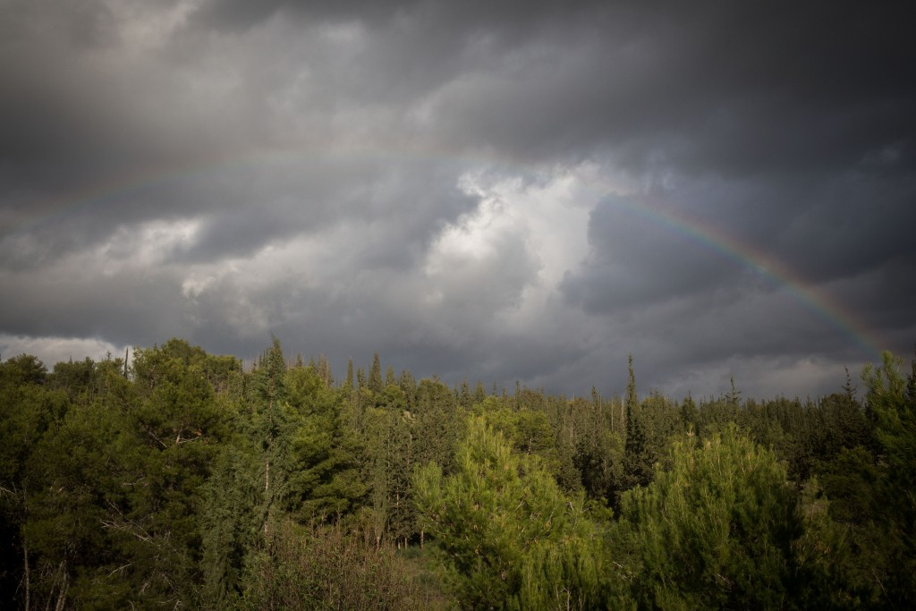 A rainbow is seen in the skies over the Jerusalem Mountains after a heavy rain storm, January 2, 2016. Photo by Nati Shohat/ Flash90