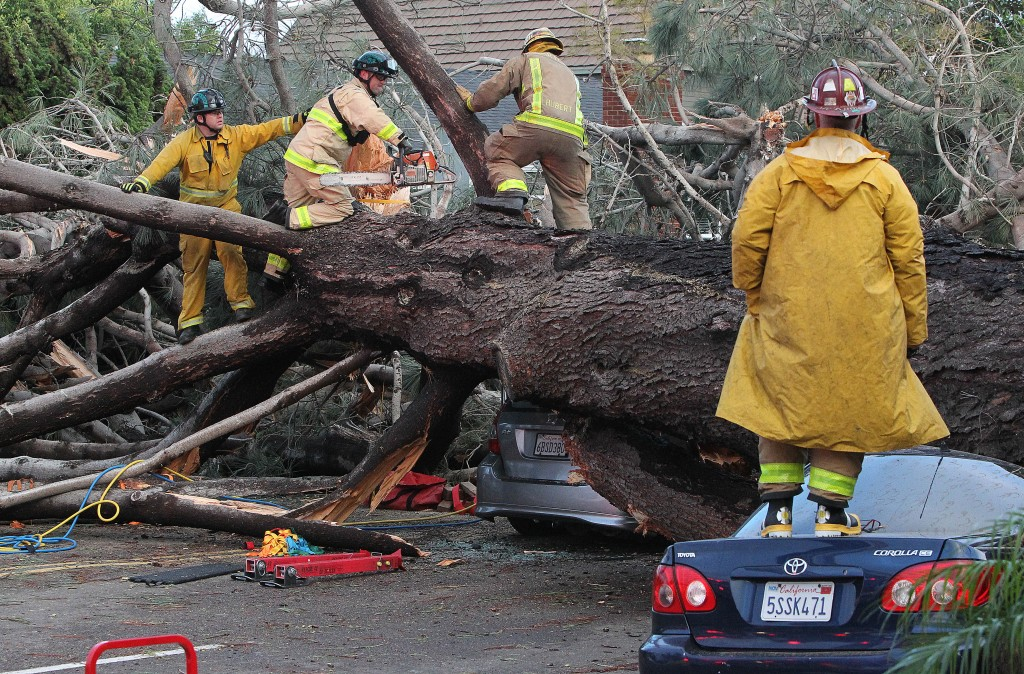 Firefighters work to remove a large tree that fell across multiple lanes of traffic, killing a motorist, in Pacific Beach, Calif., Sunday, Jan. 31, 2016. Powerful winds have downed dozens of trees and power poles and blown away rooftops as a winter storm moves across California. (John Gastaldo/The San Diego Union-Tribune via AP) NO SALES; MANDATORY CREDIT