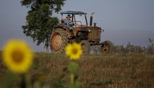 A farmer drives his tractor in Pinar del Rio, Cuba. (AP Photo/Javier Galeano, File)