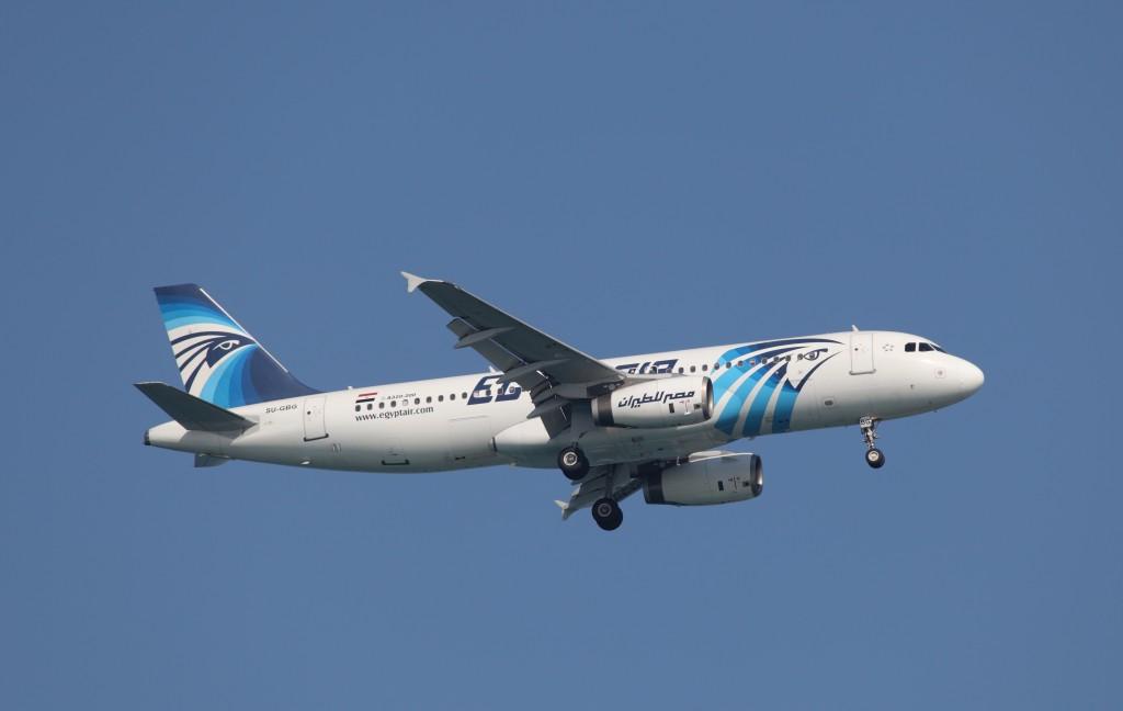 An Egyptair Airbus A320 plane . (Illustraitve)