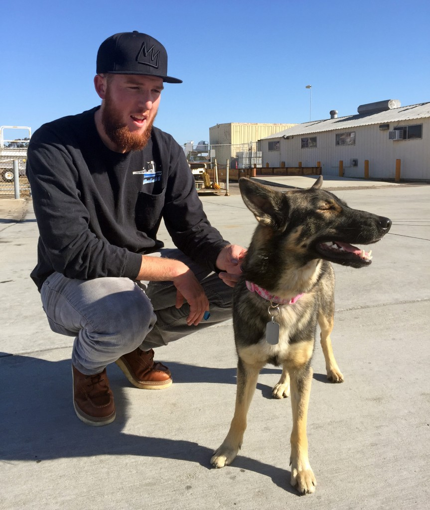 In this photo provided by the Navy, Conner Lamb squats next to Luna, the German shepherd belonging to fisherman Nick Haworth, at Naval base Coronado in San Diego. (U.S. Navy via AP)