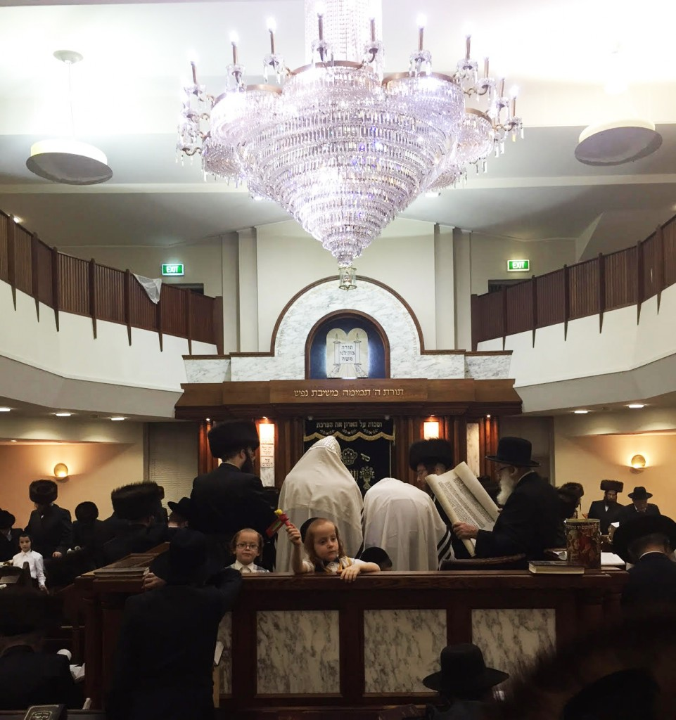 During krias haMegillah in the Adass Yisrael shul in Melbourne, Australia, Wednesday night. (Yumi Rosenbaum)