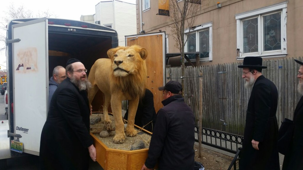 Delivering New Animals to the Living Torah Museum (JDN)