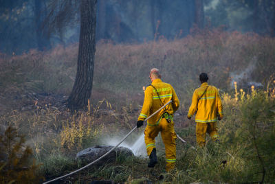 Israeli fire fighters try to extinguish a forest fire (Photo by Basel Awidat/Flash90 )