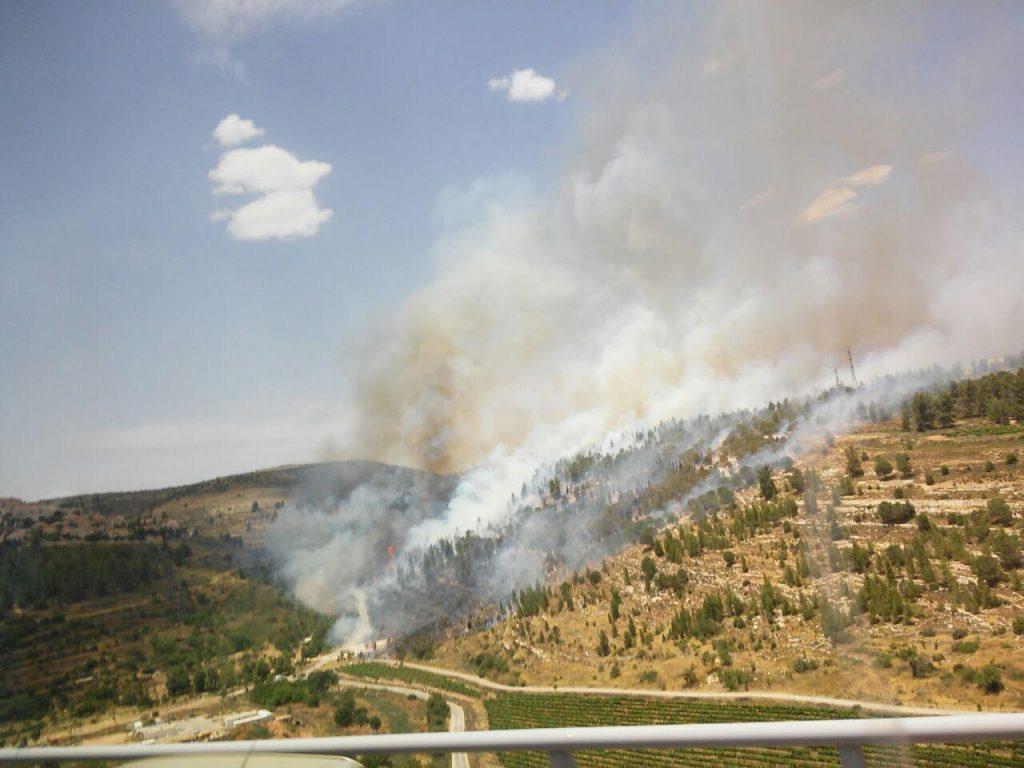 Forest fire near Ramot, (Yerushalayim Fire Brigade)