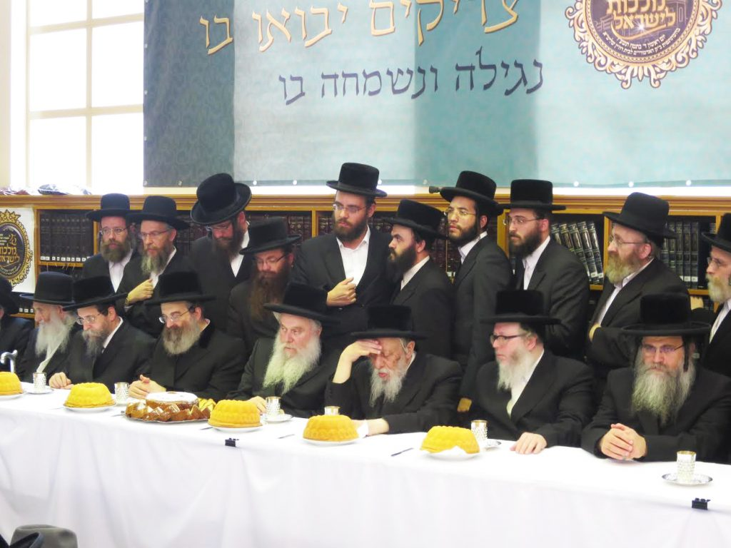 (L to R) Harav Eliyahu Sternbuh, Raavad of Antwerp, the Boyaner Rebbe, the Sadigura Rebbe, the Vasloi Rebbe, the Kopycnter Rebbe of Yerushalayim, the Bohusher Rebbe and Harav Aharon Schiff, Mara D'asra. (Mordechai Ze'ev Schwanmefled)