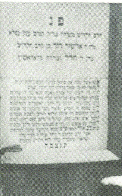 The kever of Harav Eliezer Dovid of Radoshitz.