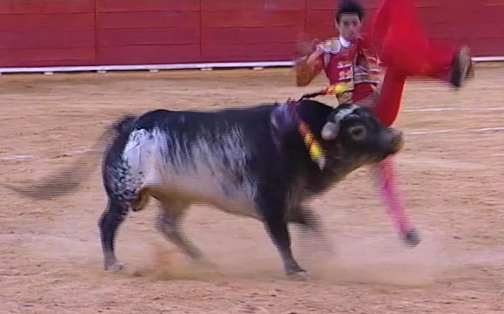 This screencap shows matador Victor Barrio being thrown by a bull during a bullfight in the Teruel bullring on Saturday. Barrio was fatally gored. (Castilla La Mancha TV via AP)