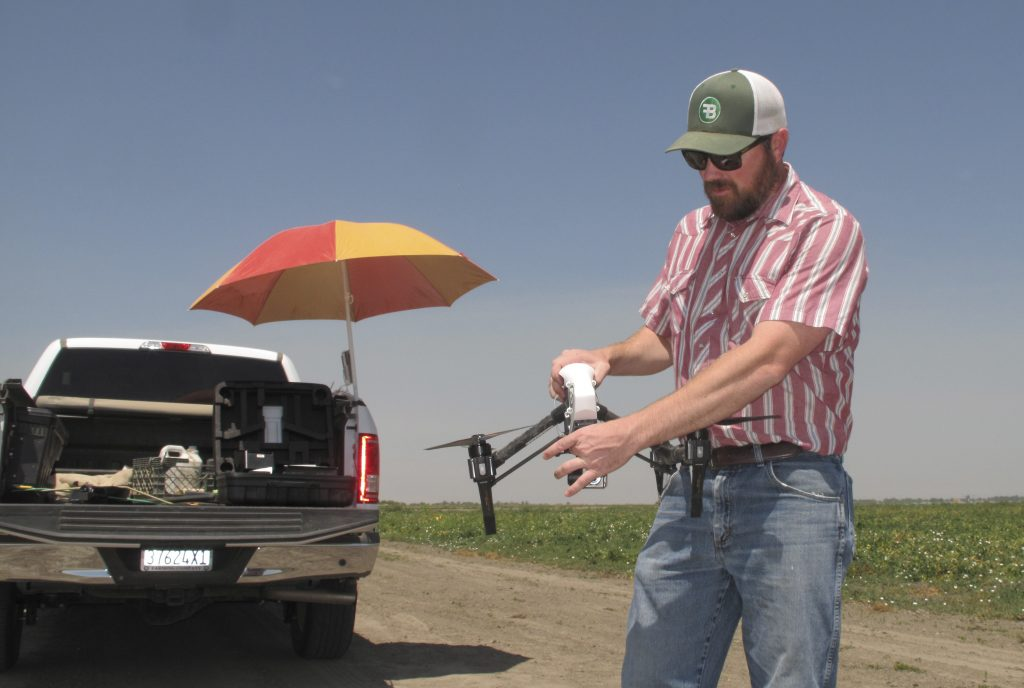 Danny Royer, vice president of technology at Bowles Farming Co., prepares to pilot a drone over a tomato field near Los Banos, Calif. (AP Photo/Scott Smith)