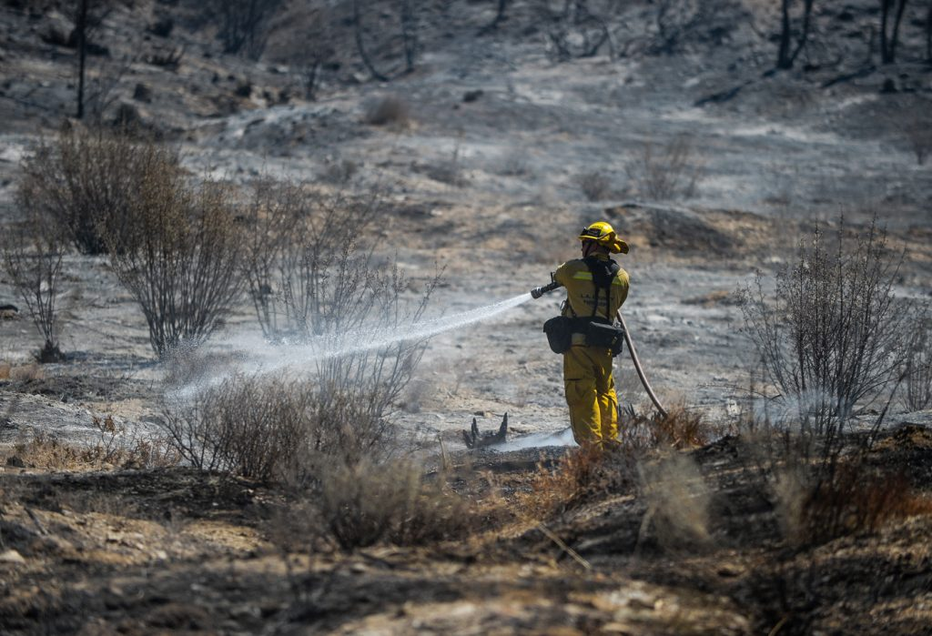Firefighters put out hot spots from a wildfire burning in Wrightwood, Calif., on Thursday, Aug. 18, 2016. As flames overtook the pine forests surrounding Wrightwood, only half of the residents in this picturesque mountain town heeded the evacuation orders. Californians are increasingly ignoring the orders, growing accustomed to wildfires as the region faces what could be the most hazardous season yet. (Rachel Luna/The Sun via AP)