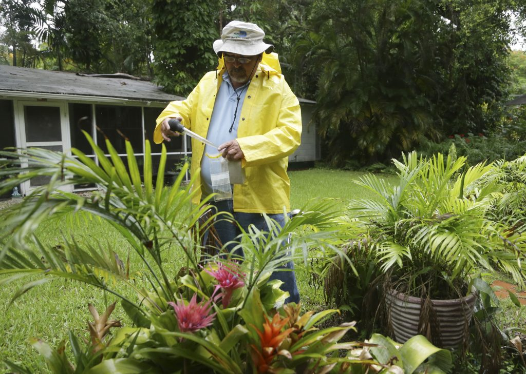 Robert Muxo of the Miami-Dade County Mosquito Control department, takes a sample of water that was standing in a potted bromeliad, Tuesday, June 21, 2016, in Miami. (AP Photo/Lynne Sladky)