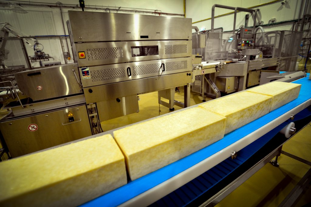 Cheese production at the Tnuva Tel Yosef dairy plant in Israel. (Yossi Zeliger/Flash90)