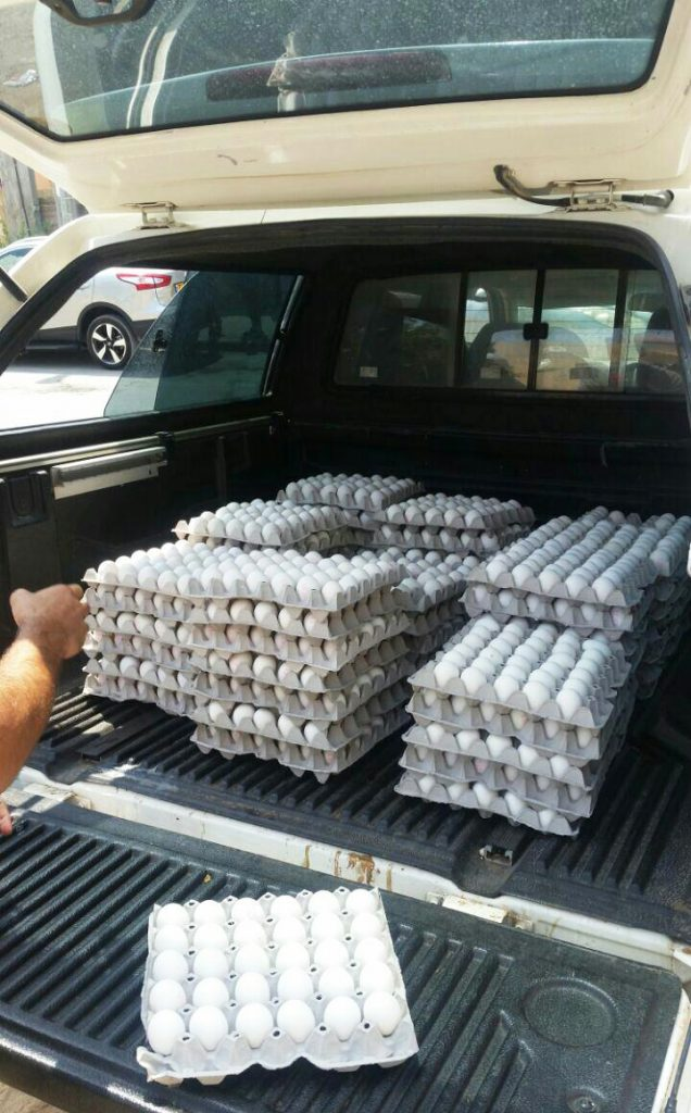 Illegal eggs confiscated by Israel Police. (Police Spokesman)