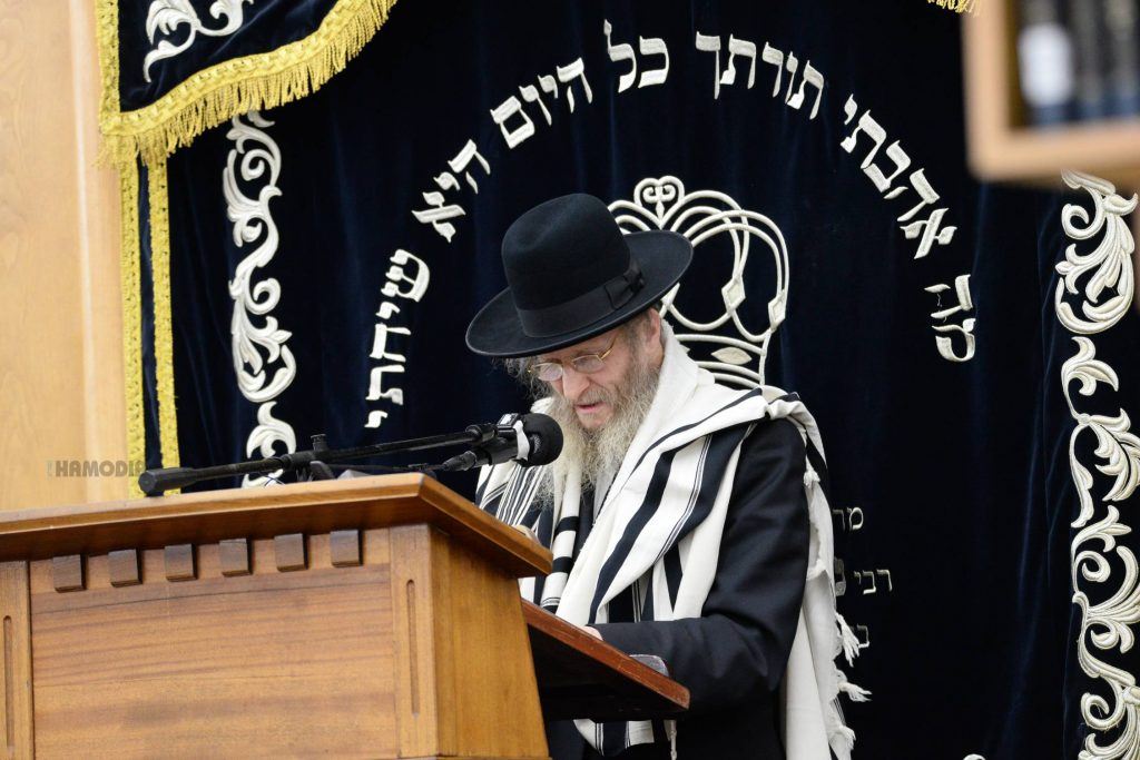 Hagaon Harav Don Segal delivers a hesped. (JDN)