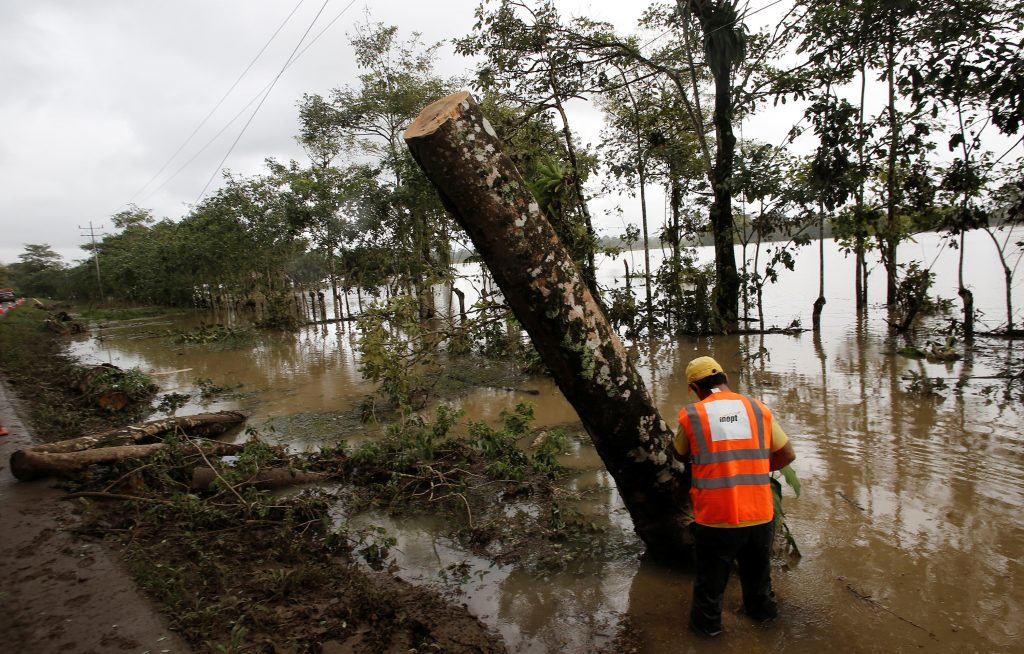 An emergency worker cuts trees while attempting to restore electricity in a zone affected by Hurricane Otto in Bijagua de Upala, Costa Rica. (Juan Cordero/Reuters)