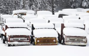 Vintage Chevy trucks are covered in snow at Adler's Antique Autos in Stephentown, N.Y.,on Monday. (AP Photo/Mike Groll)