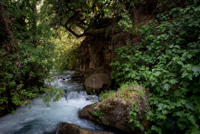 View of springs in Banias Nature Reserve in Northern Israel. April 03, 2016. Photo by Miriam Alster/FLASH90 *** Local Caption *** ???? ???? - ???? ??????? ??? ??????