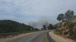 The fire near Nataf, Wednesday. (Arik Abulaf, Fire Brigade)