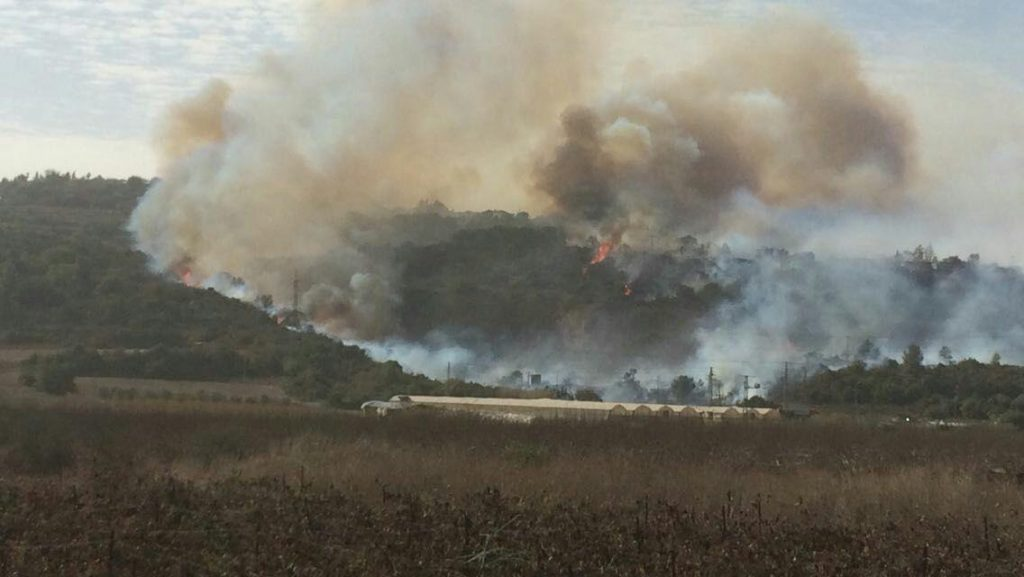 The mass fire in Zichron Yaakov. (National Fire Brigade)