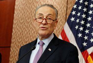 Senate Minority Leader-elect Charles Schumer (AP Photo/Evan Vucci)