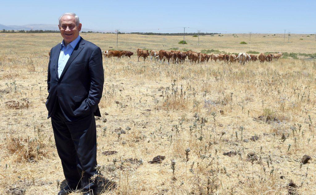 Fire, Golan, Netanyahu
