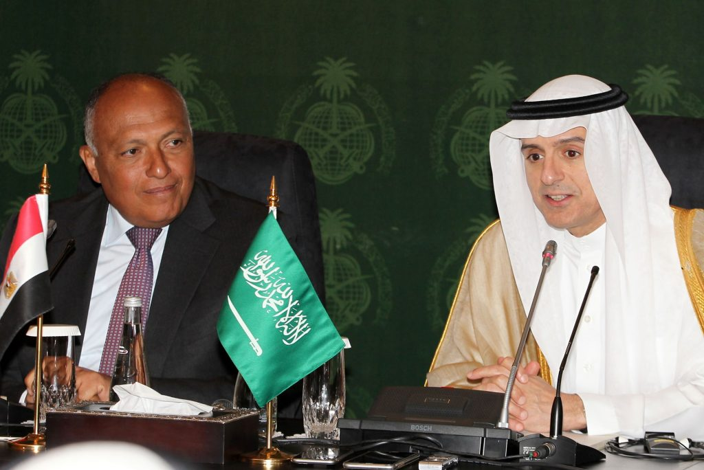 Saudi, Egypt, Foreign Ministers, Meet, Strengthen Ties