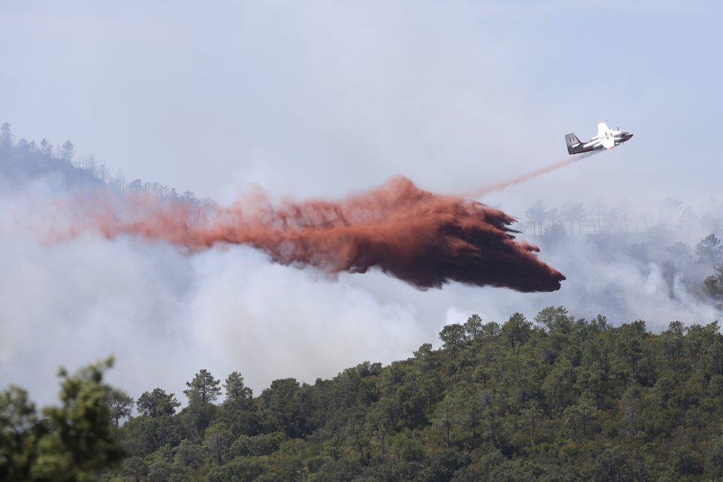 Riviera wildfire