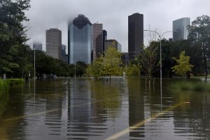 flood Houston