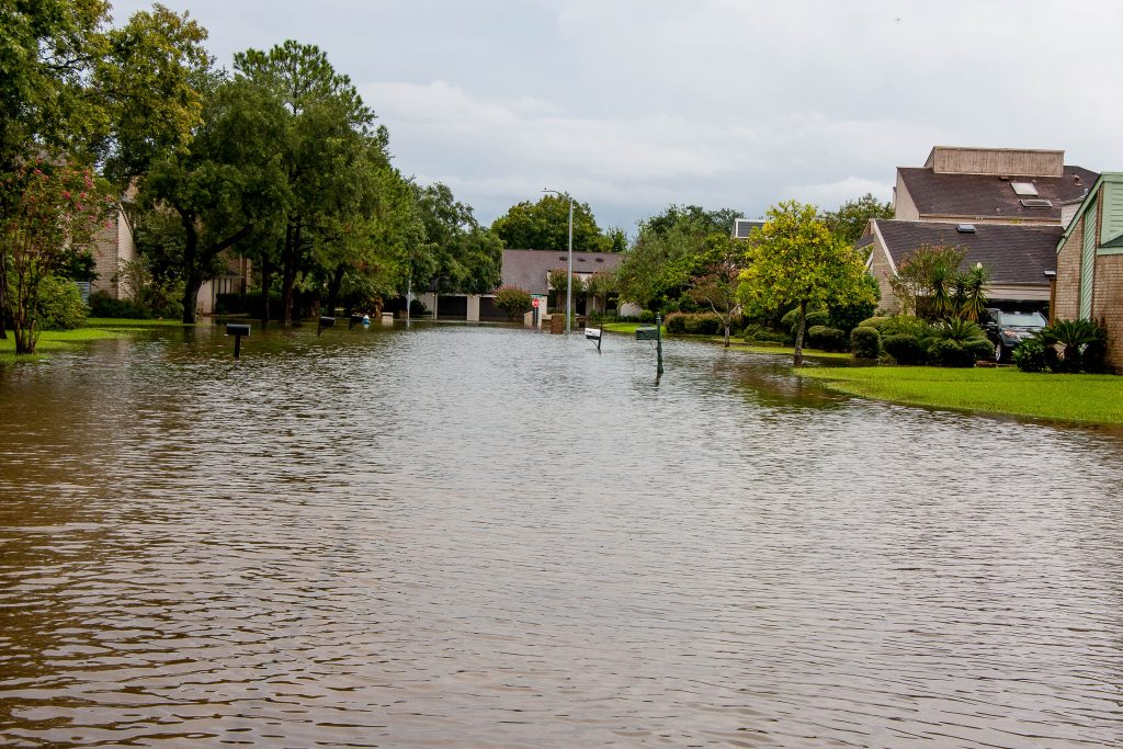 Houston, Jewish, Community, Hurricane, Harvey