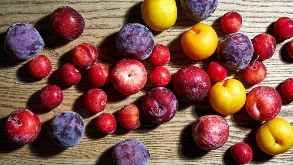 hybrid fruits