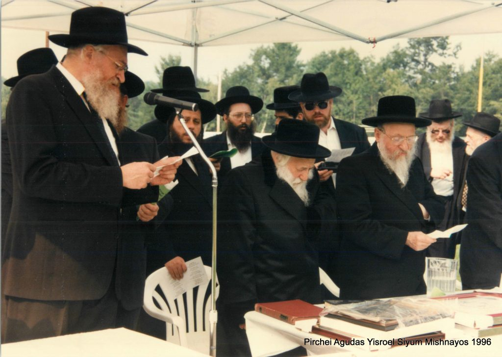 skulener rebbe, agudath israel