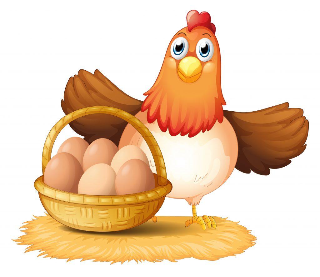 egg prices, eggs