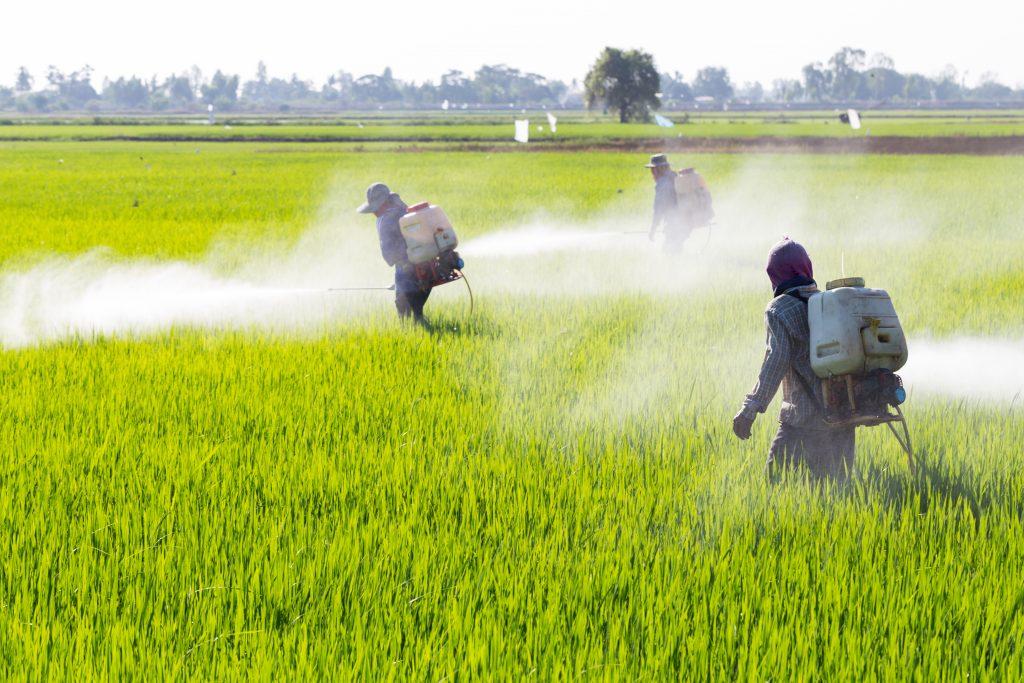 epa pesticides