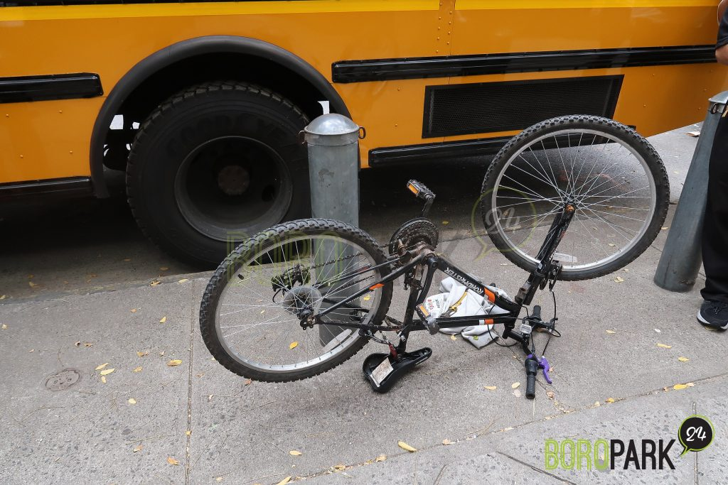 bike thief boro park