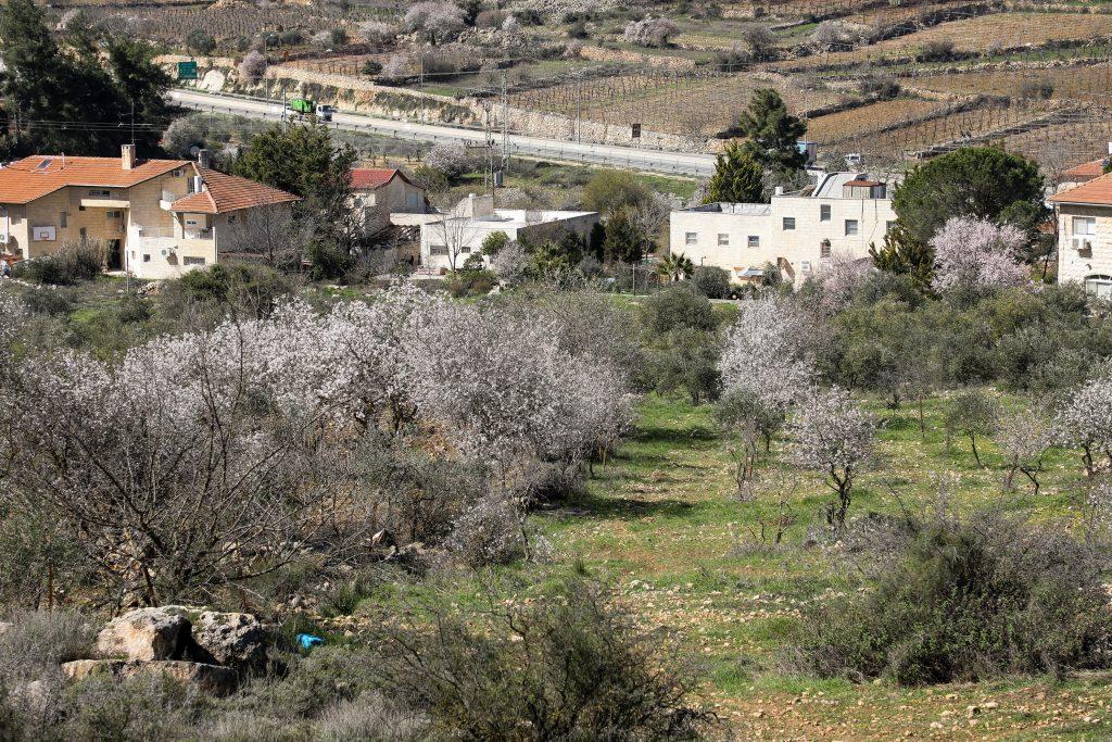 israel peace plan